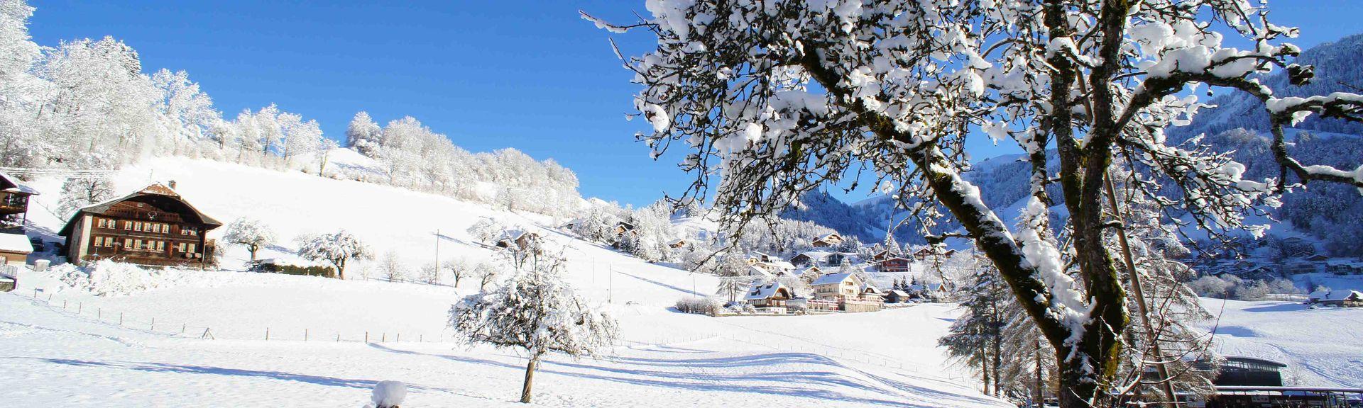 Charmey, Canton of Fribourg, Switzerland
