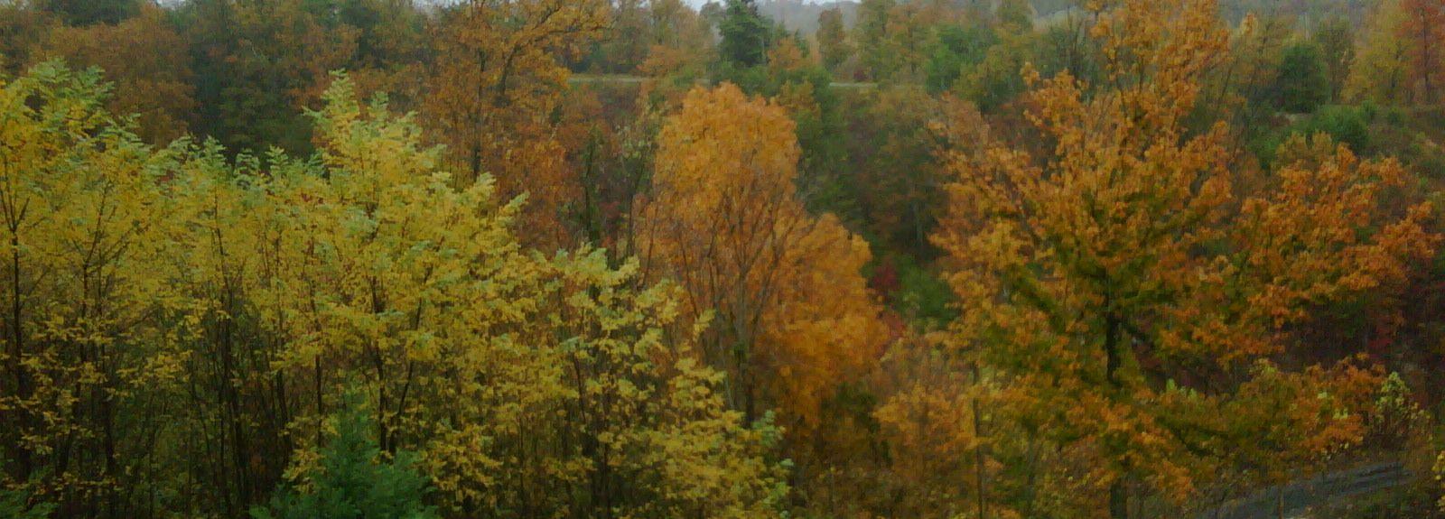 Εθνικός Χώρος Αναψυχής Land Between the Lakes, Κεντάκι, Ηνωμένες Πολιτείες