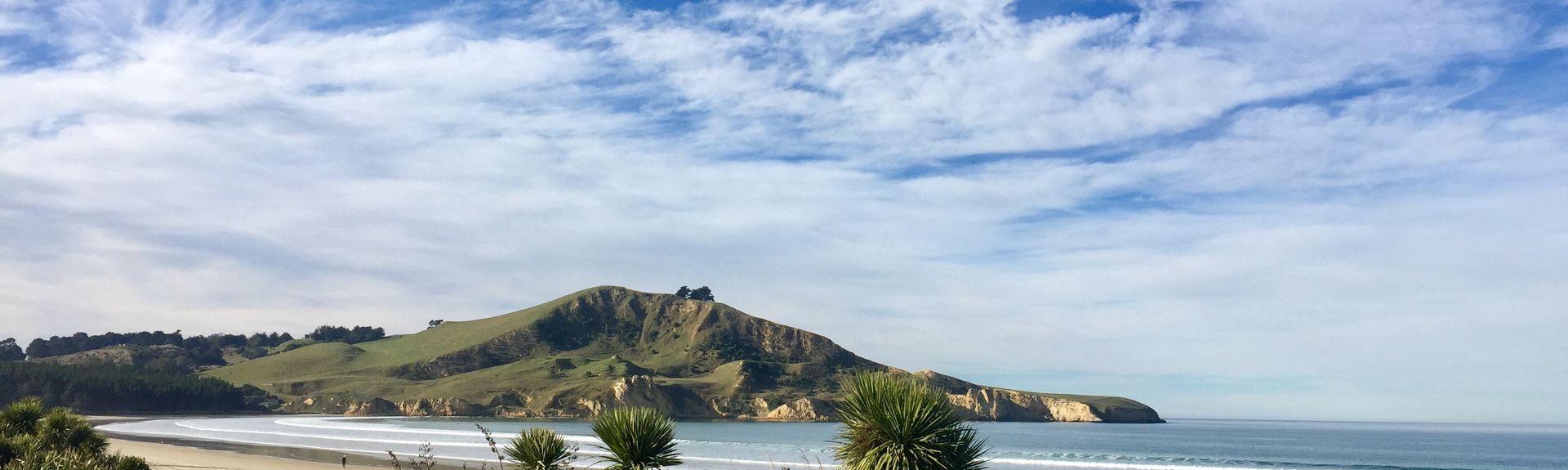 Seacliff, Dunedin City, Otago, New Zealand