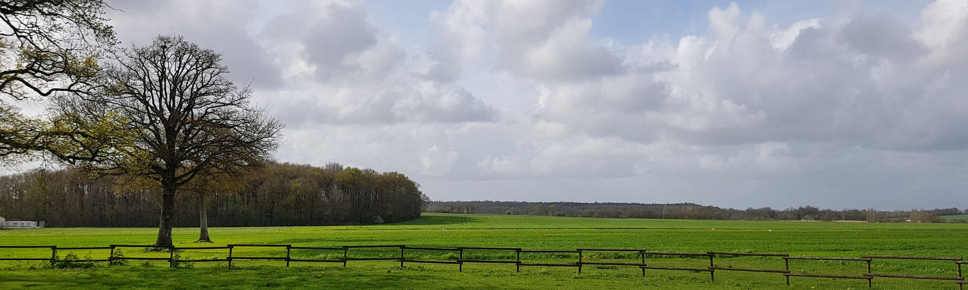 Chantonnay, Vendée (departement), Frankrike