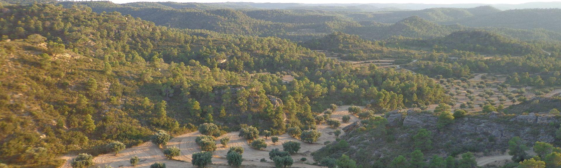 Motorland Aragon, Alcaniz, Aragon, Spain