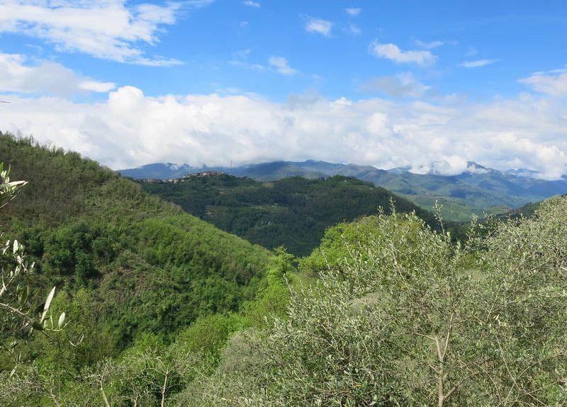 Bozzano, Lucca, Tuscany, Italy