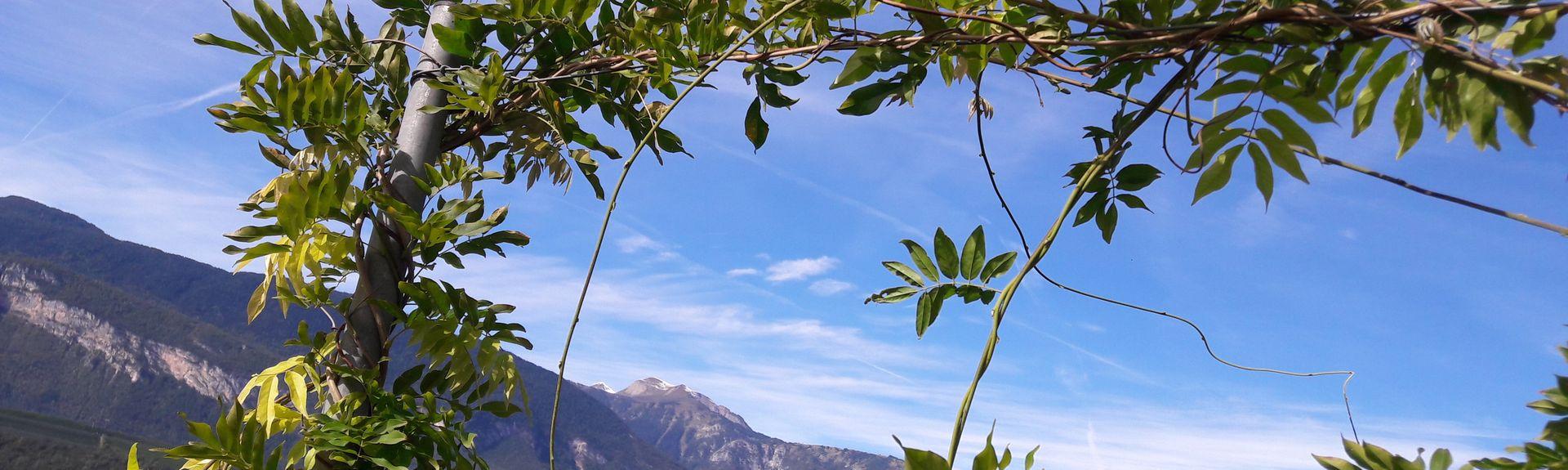 Gröna tornet, Trento, Trentino-Alto Adige, Italien