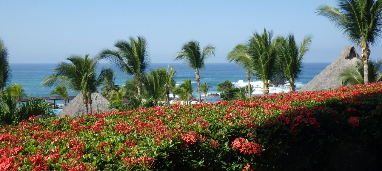 North End, Sayulita, Nayarit, Mexique