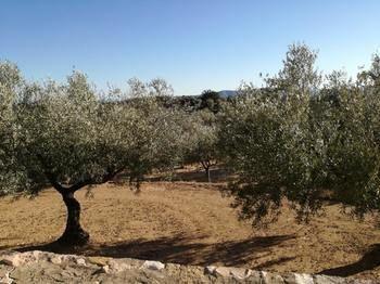 Morella, Comunidad Valenciana, España