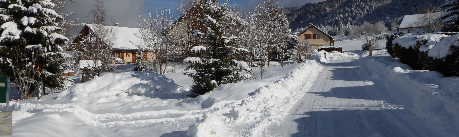 Saint-Martin-d'Hères, Auvernia-Ródano-Alpes, Francia