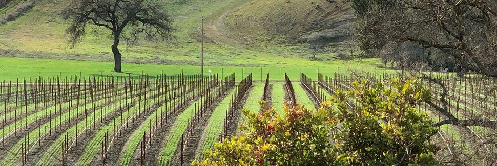 Cass Winery, Paso Robles, CA, USA