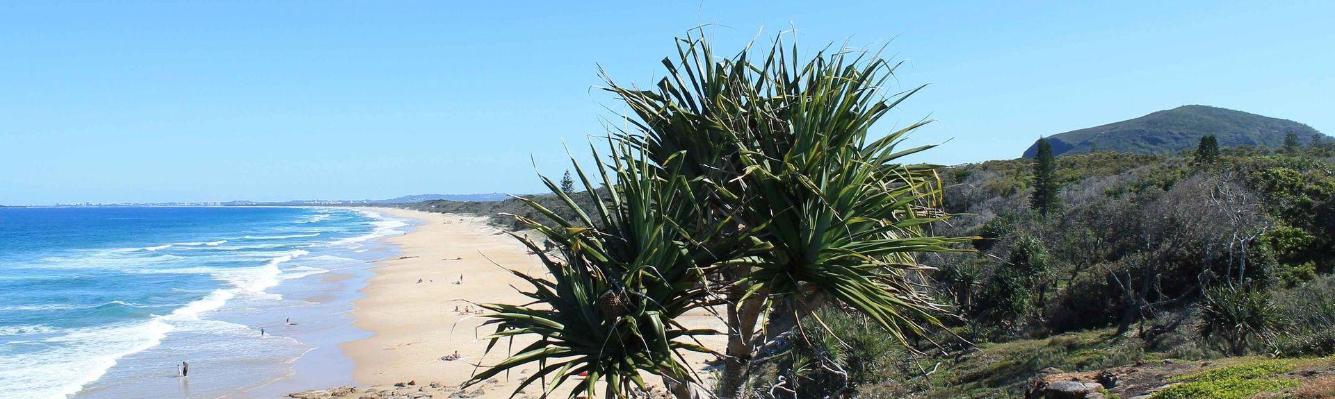 Kings Beach, Kings Beach, Queensland, Australia