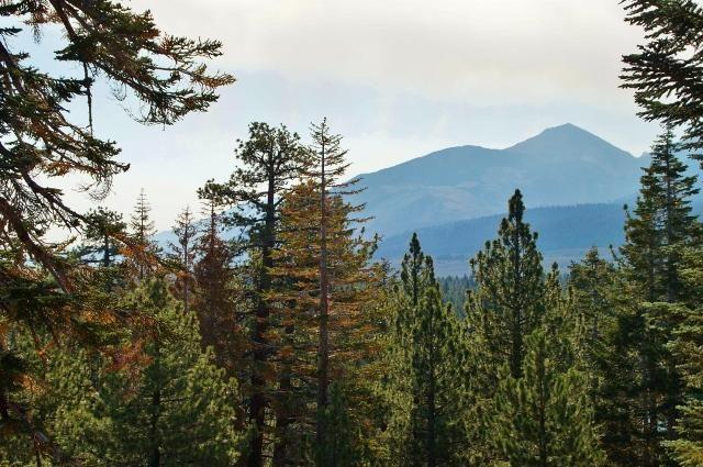 Mountainback (Mammoth Lakes, Californië, Verenigde Staten)