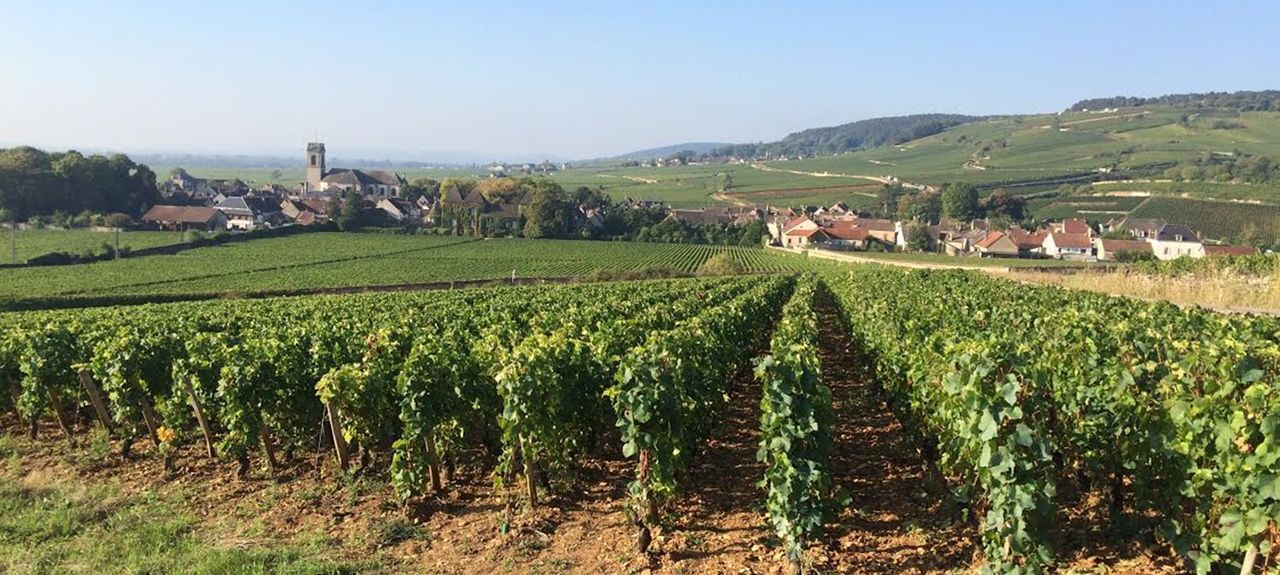 Marey-lès-Fussey, France