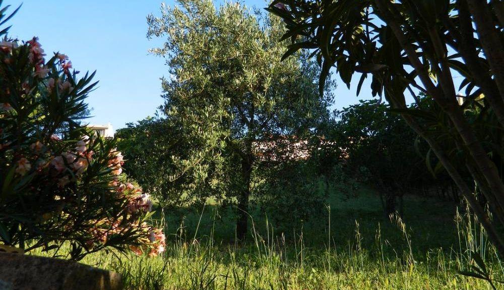 Ozieri, Sassari, Sardinia, Italy