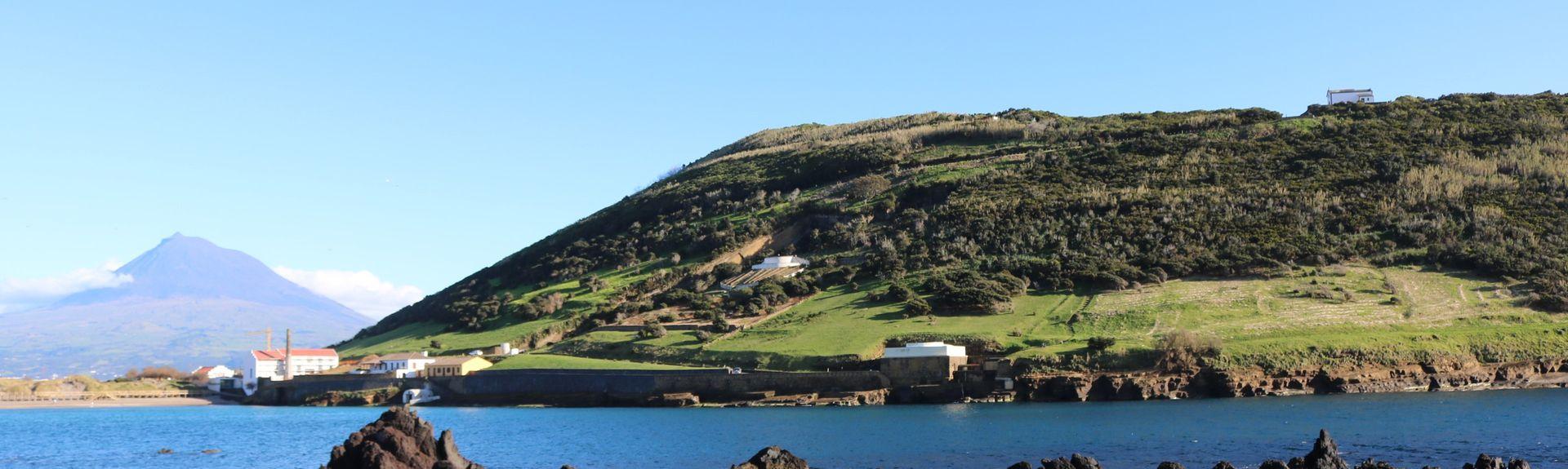 Municipality of Madalena, Portugal