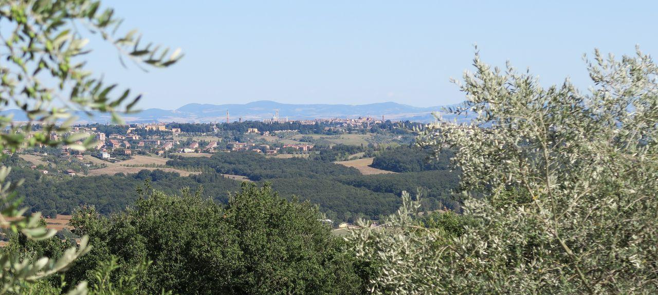 San Rocco A Pilli, Siena, Tuscany, Italy