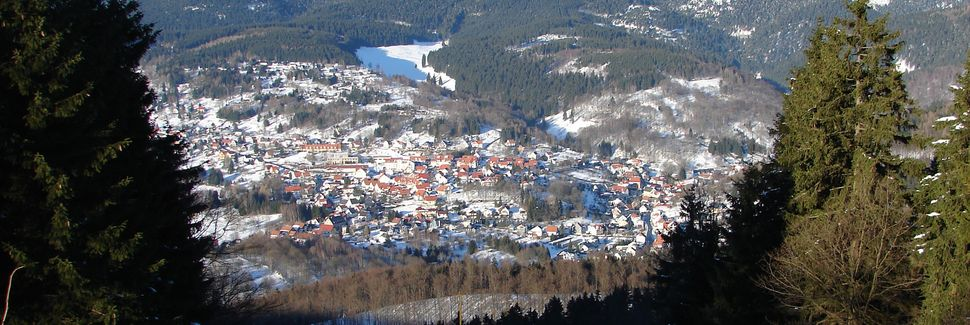 Schmiedefeld am Rennsteig, Thüringen, Tyskland
