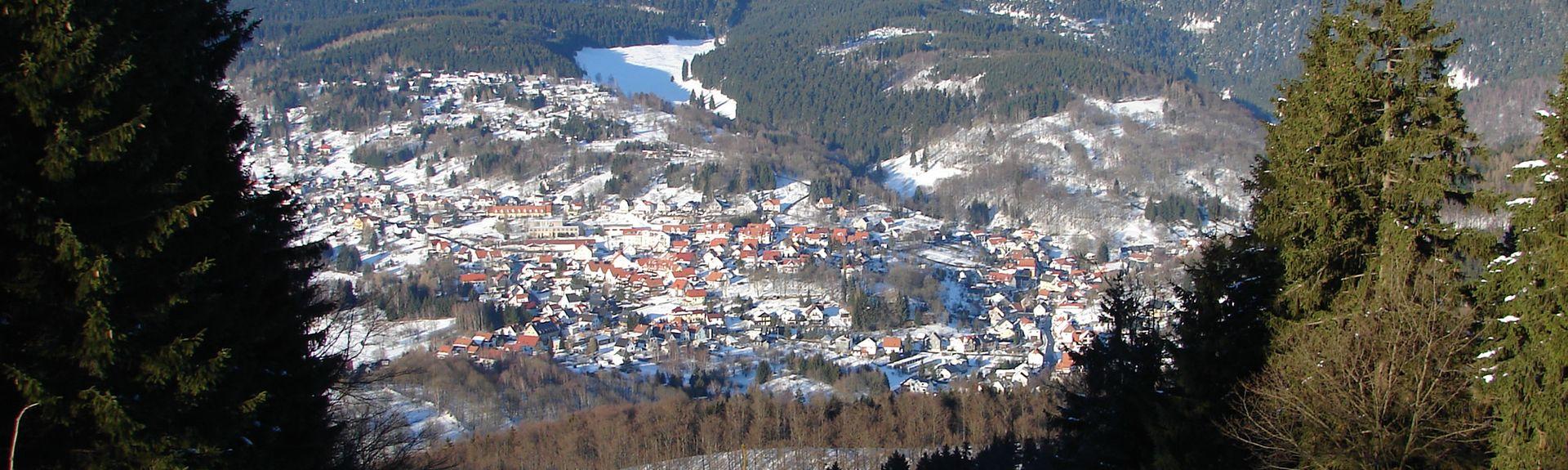 Schleusegrund, Thüringen, Deutschland