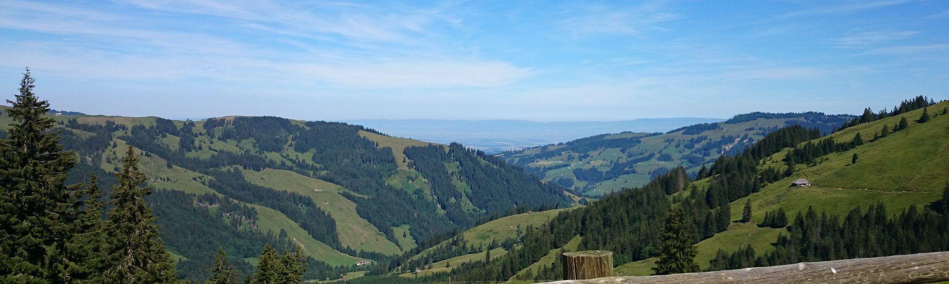 Düdingen, Switzerland