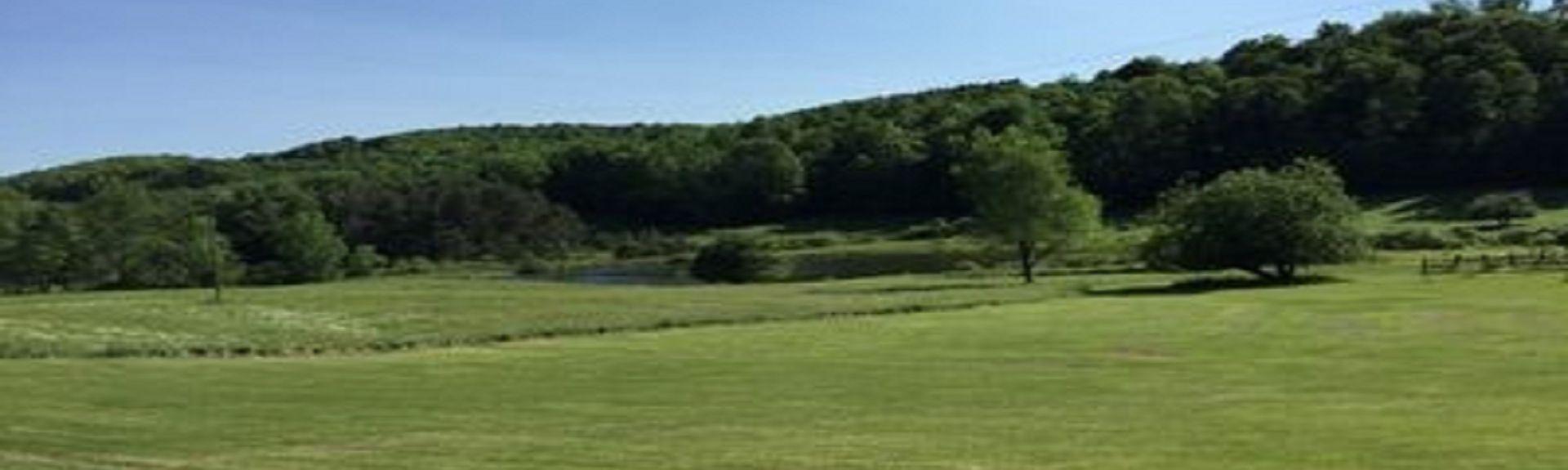 Meadow Links Golf Course, Richfield Springs, Nova York, Estados Unidos