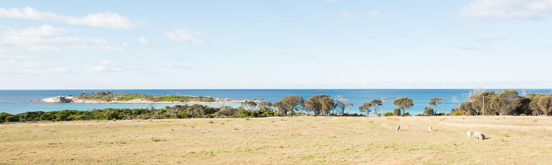 East Coast Natureworld, Bicheno, Tasmania, Australia