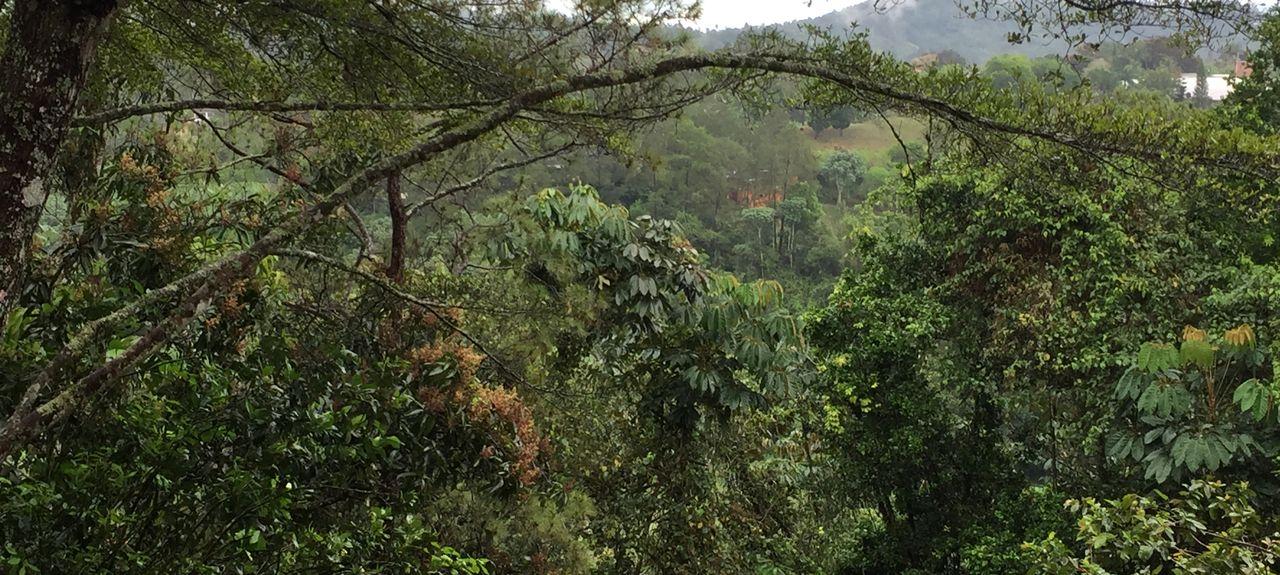La Vega Province, Dominican Republic