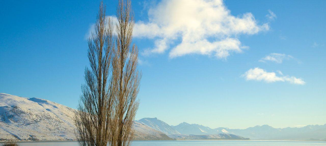 Mackenzie District, Canterbury, New Zealand