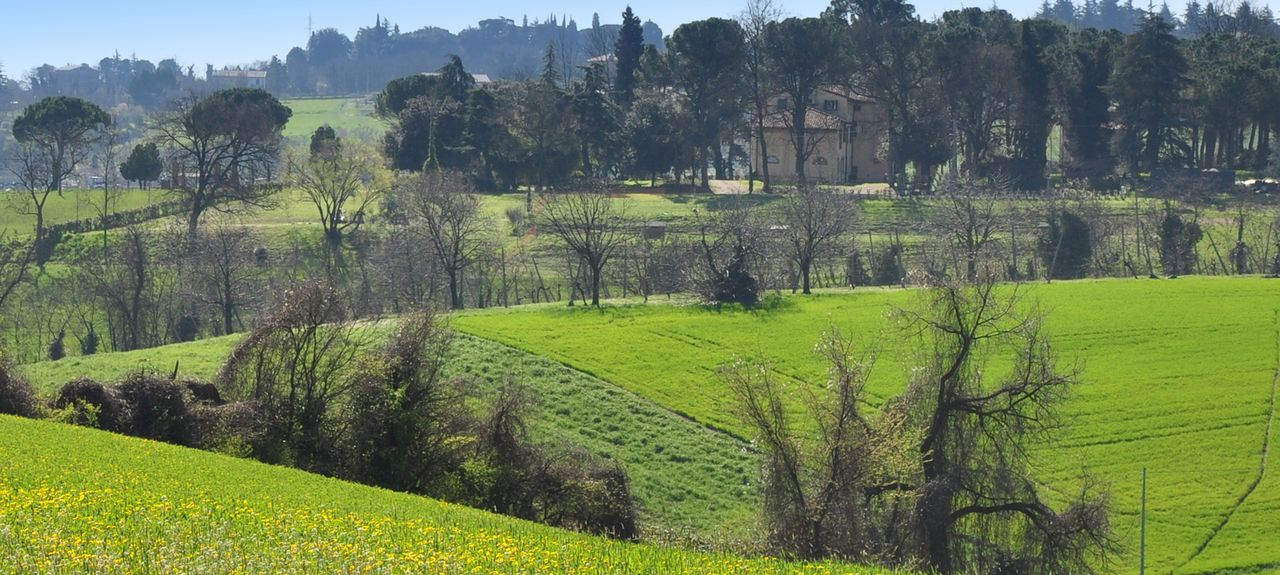 Dozza, Metropolitan City of Bologna, Emilia-Romagna, Italy