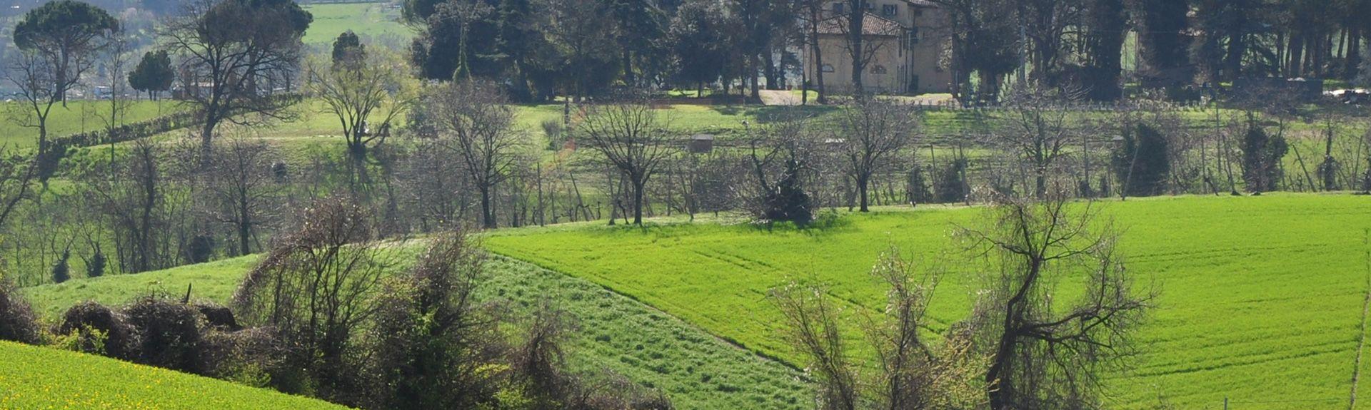 Imola, Emilia-Romaña, Italia
