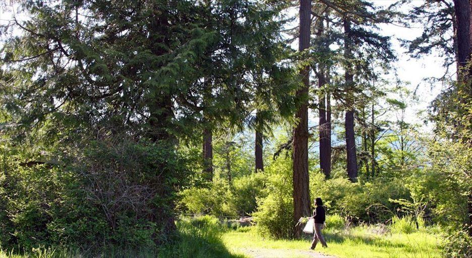 Samish Island, Washington, USA