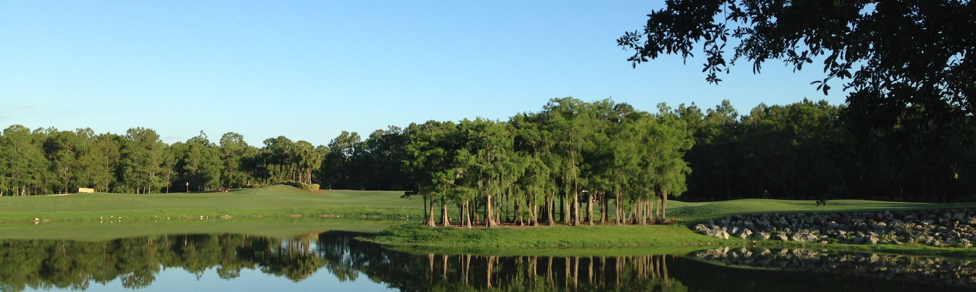 Cedar Hammock (Naples, Florida, USA)