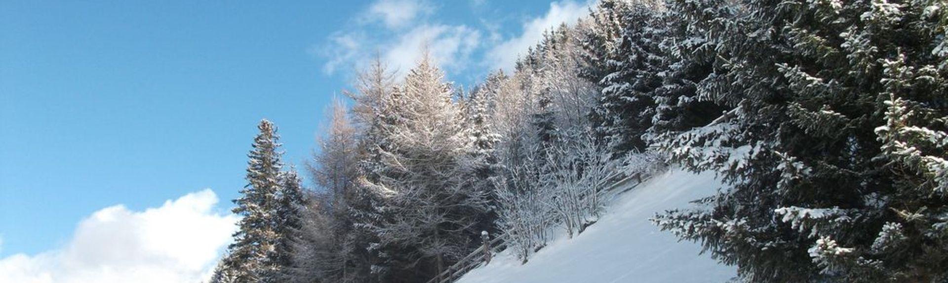 Lans, Tyrol, Austria