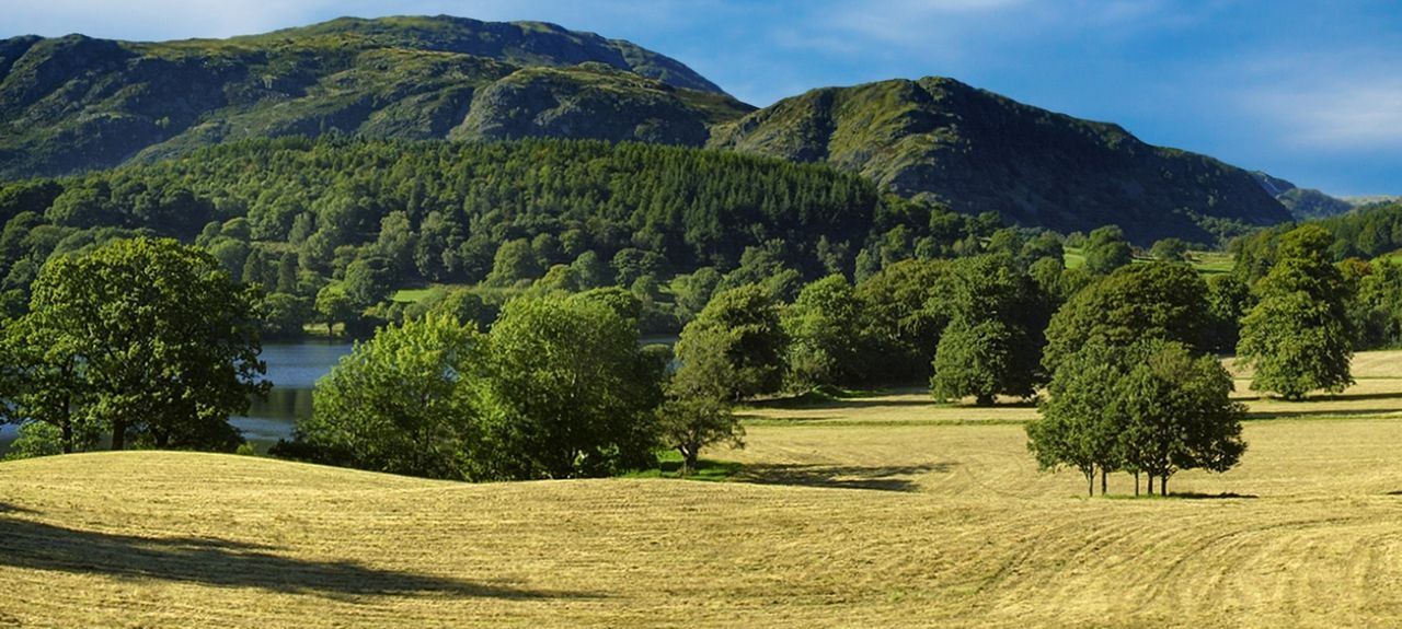 Lowick Green, England, United Kingdom