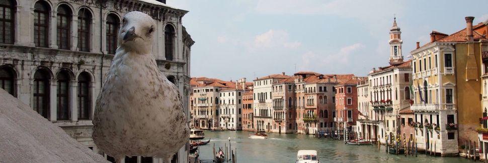 San Polo, Veneza, Vêneto, Itália