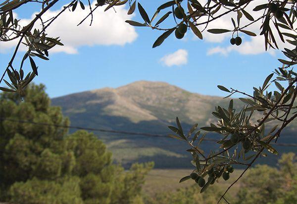 Valdesotos, Kastilien-La Mancha, Spanien