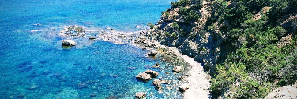 Μαντριά, Πάφος, Κύπρος
