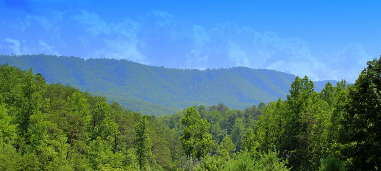 Sherwood Forest Resort (Pigeon Forge, Tennessee, United States)
