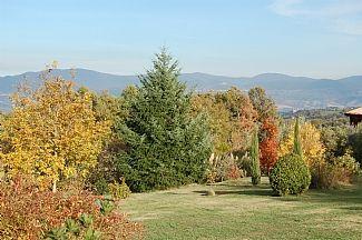 Civitella d'Agliano, Lazio, Italia
