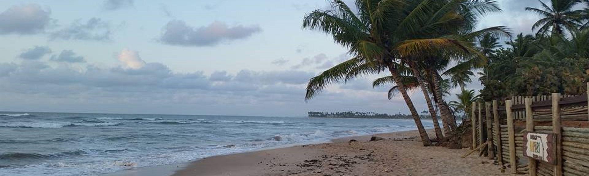 Praia do Forte, Mata de São João, Região Nordeste, Brasil