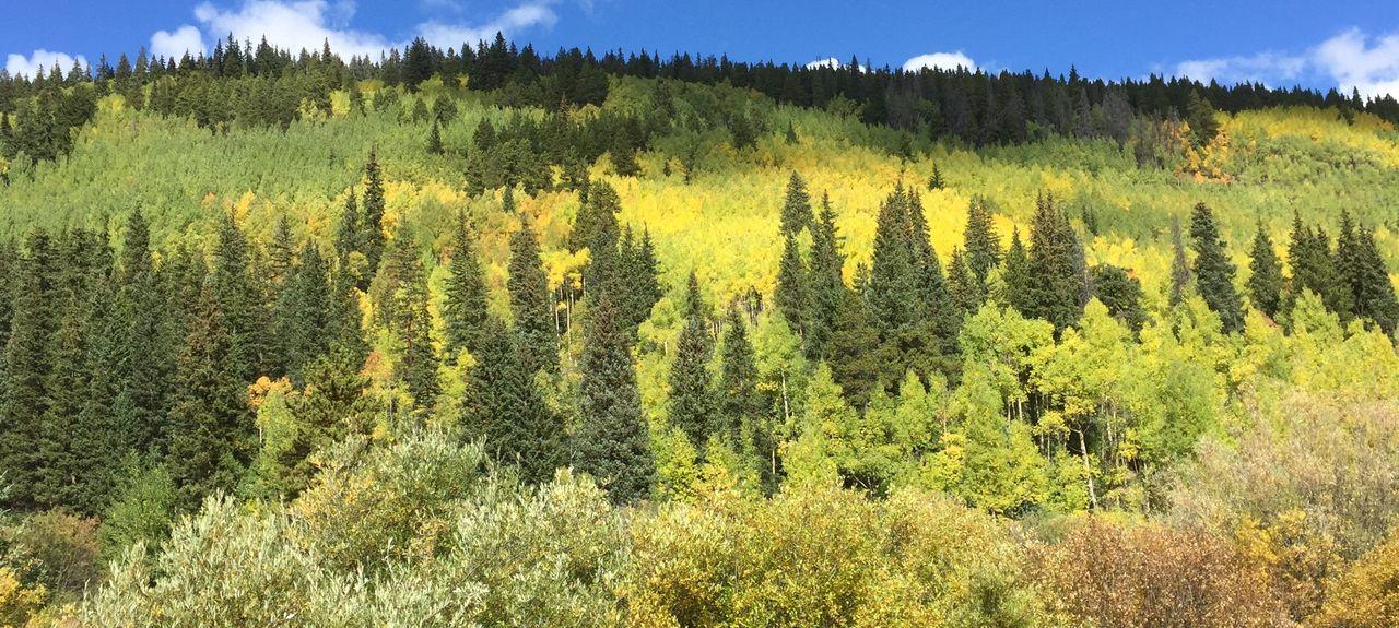 Copper Mountain Village, Copper Mountain, Colorado, Stati Uniti d'America