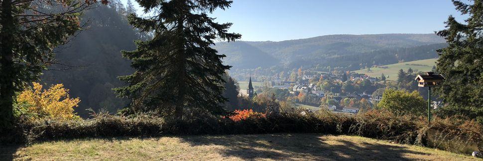 Hatzfeld, Hessen, Deutschland