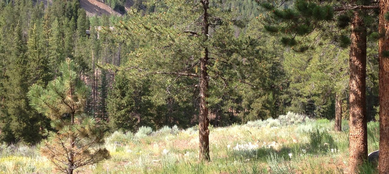 Keystone Village, Pines at Keystone, Keystone, CO, USA