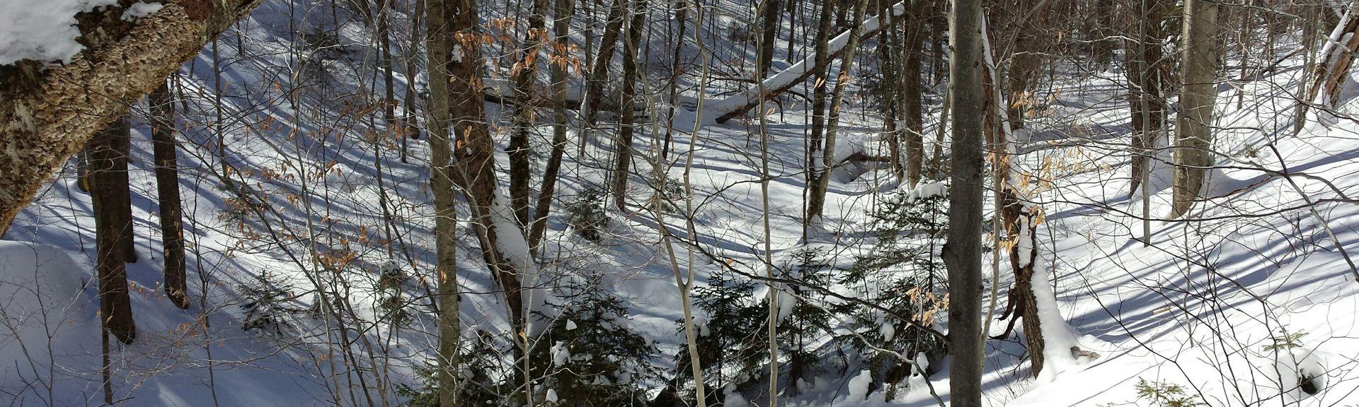 Park stanowy Lake Shaftsbury, Shaftsbury, Vermont, Stany Zjednoczone