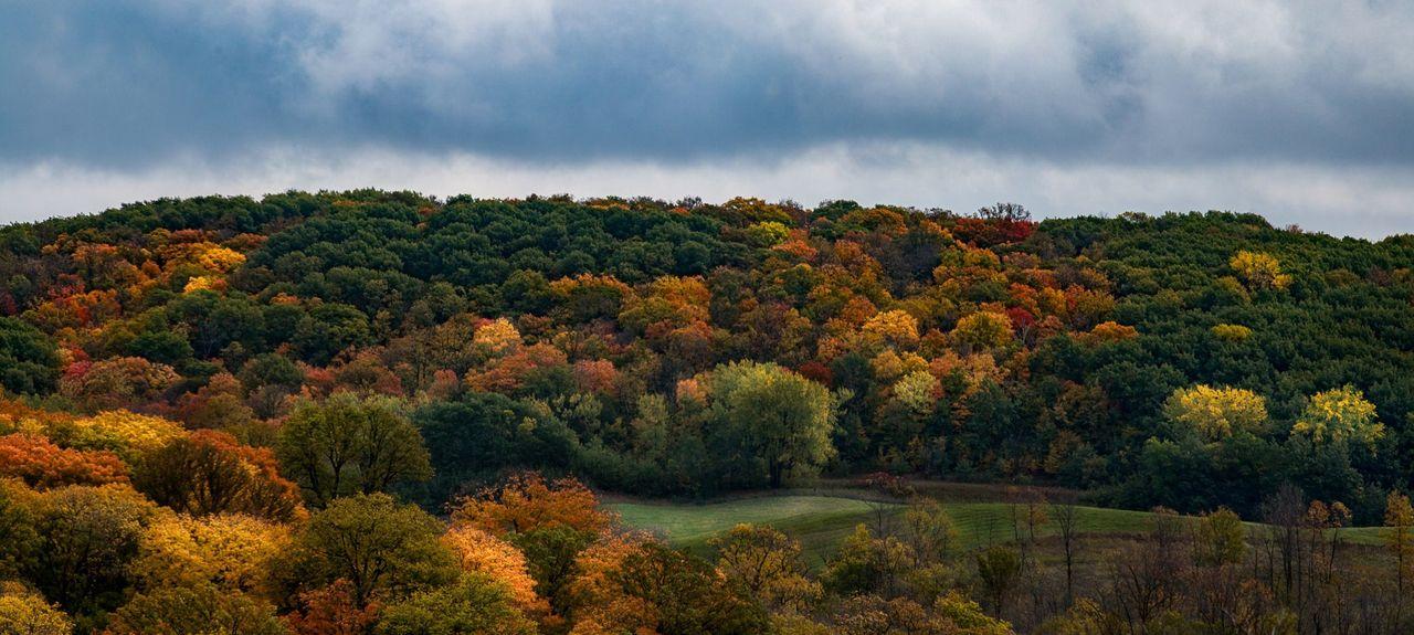 Pelican Rapids, Minnesota, United States