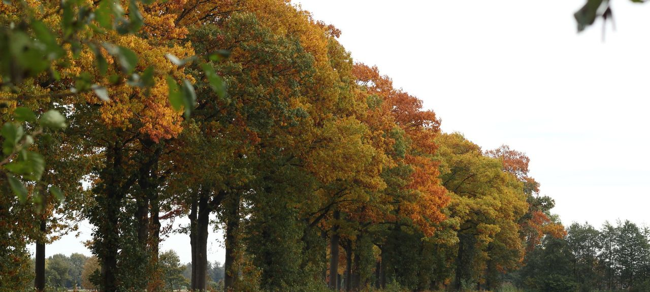 Breedenbroek, Netherlands