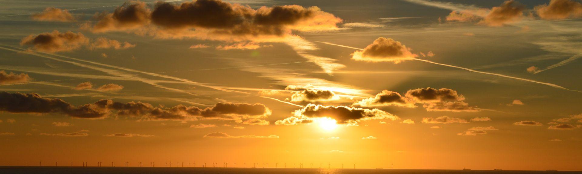 Noordhollands Duinreservaat, Egmond aan Zee, Holandia Północna, Holandia