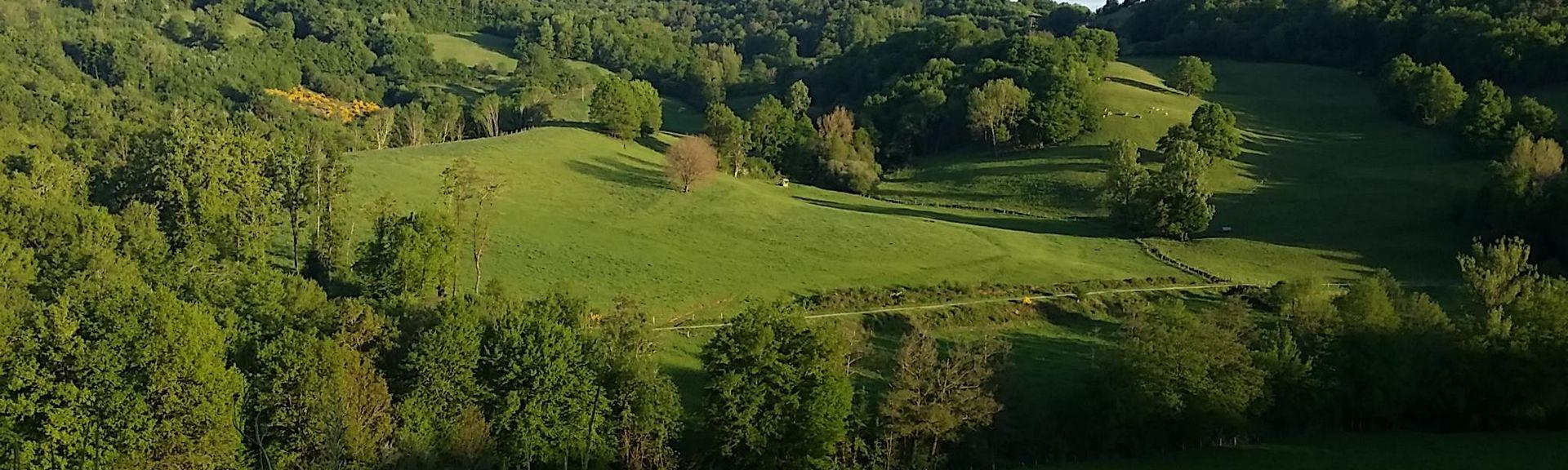 Saint-Hilaire-Peyroux, Corrèze (departement), Frankrijk