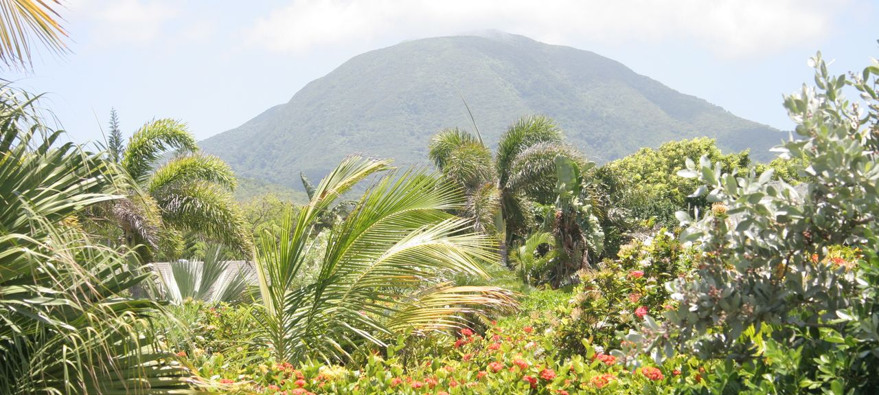 Rices, Saint Kitts and Nevis
