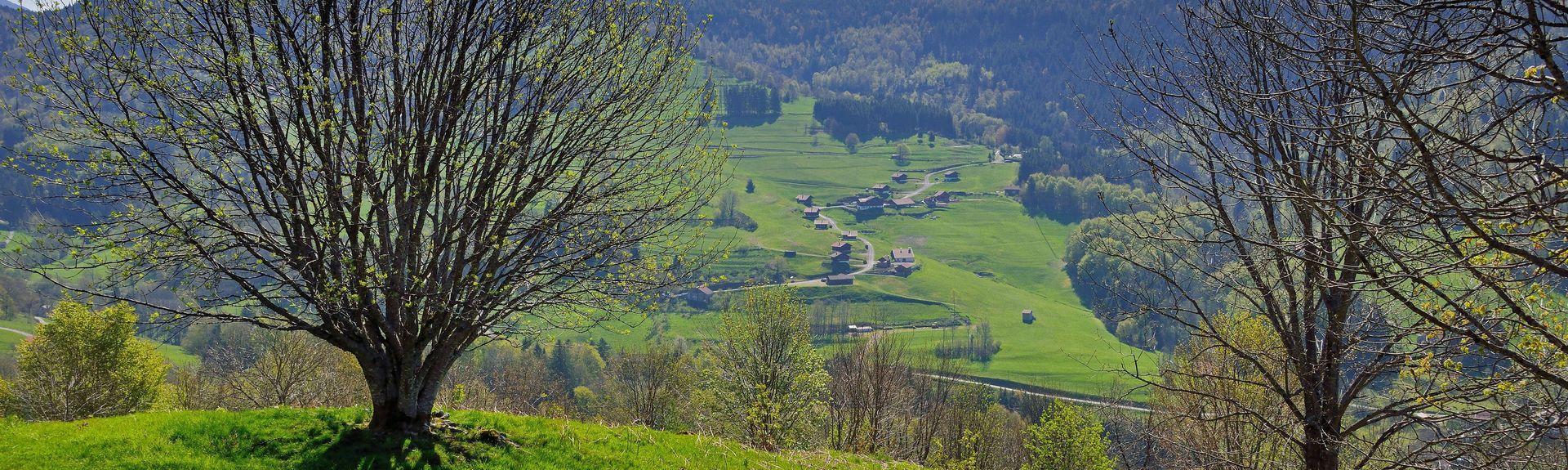 Auxelles-Haut, France