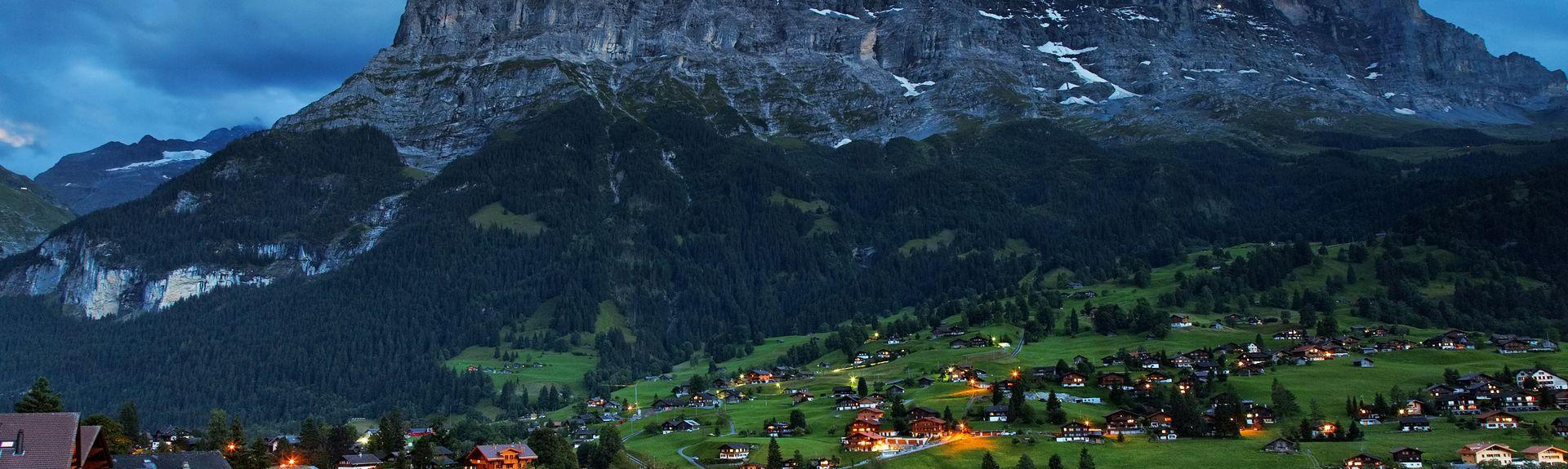 Grindelwald, Kanton Berno, Szwajcaria
