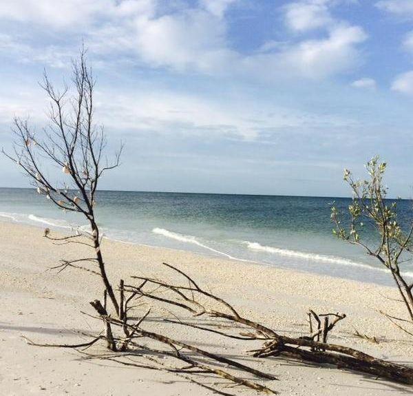Anglers Cove, Marco Island, FL, USA