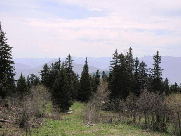 Parc naturel régional du Vercors, Lans-en-Vercors, Auvergne-Rhône-Alpes, France