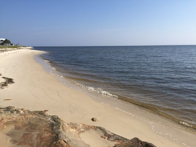 Shell Point, Crawfordville, Florida, Forente Stater